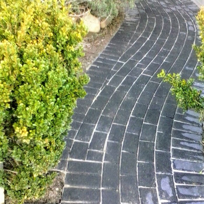 CHARCOAL CEMENT PAVER PATHWAY